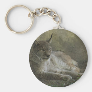 Lynx wild animal from north america basic round button keychain