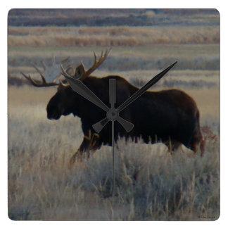 M0002 Bull Moose Square Wall Clock