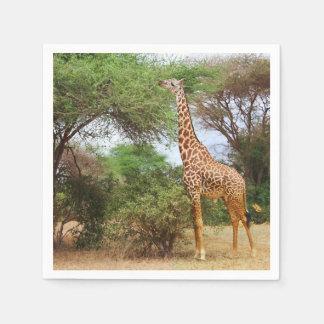 Maasai Giraffe Disposable Napkins