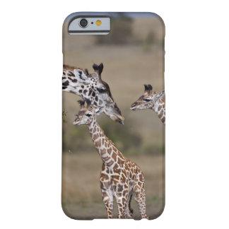 Maasai Giraffe (Giraffe Tippelskirchi) as seen Barely There iPhone 6 Case