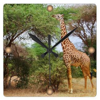 Maasai Giraffe Wall Clocks