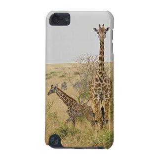 Maasai Giraffes roaming across the Maasai Mara iPod Touch (5th Generation) Cover
