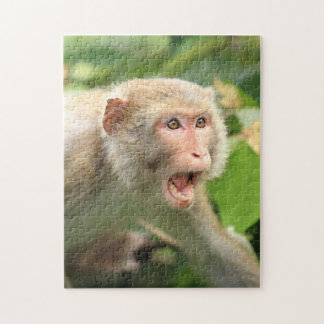 Macaque Monkey of Hong Kong Wildlife Primate Jigsaw Puzzle
