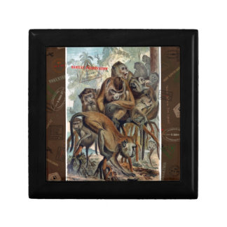 Macaque Responsible Travel Art Jewelry Box