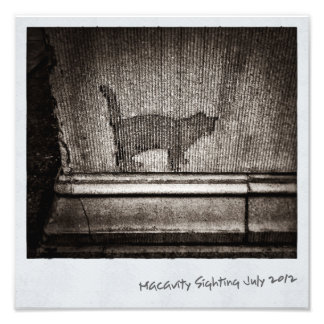 Macavity's Not There Photo