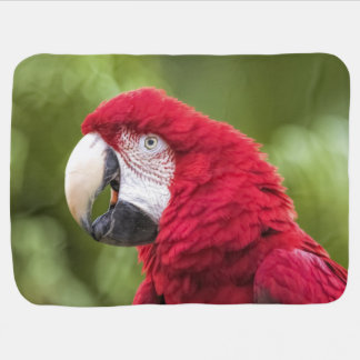 Macaw Baby Blanket
