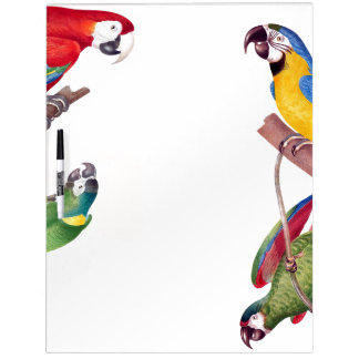 Macaw Birds Wildlife Animals Dry Erase Board