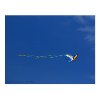 Macaw Kite Postcard