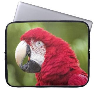 Macaw Laptop Sleeve