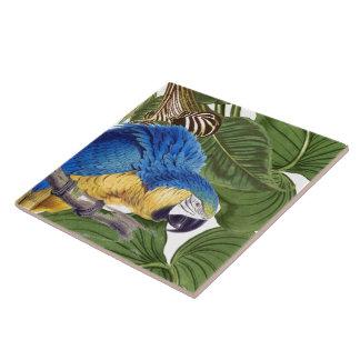 Macaw Parrot Bird Wildlife Animal Leaves Tile