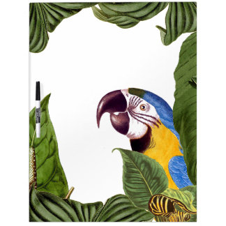 Macaw Parrot Bird Wildlife Leaves Dry Erase Board