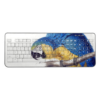 Macaw Parrot Bird Wildlife Wireless Keyboard