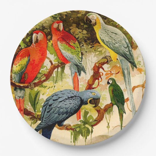 Macaw Parrot Birds Animals Wildlife Paper Plates 9 Inch Paper Plate