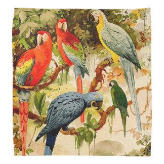 Macaw Parrot Birds Wildlife Animal Jungle Bandana
