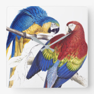 Macaw Parrot Birds Wildlife Animals Wall Clock