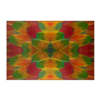 Macaw parrot feather kaleidoscope acrylic print