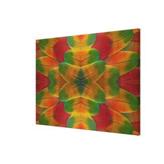 Macaw parrot feather kaleidoscope canvas print