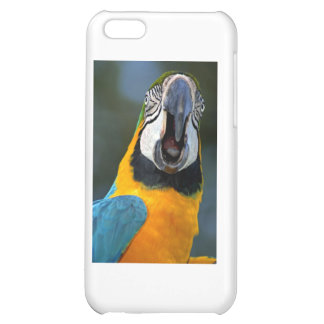 Macaw Parrot iPhone Cover iPhone 5C Cases