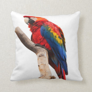 macaw- scarlet throw pillow
