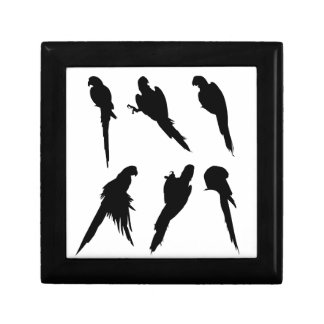 Macaw Silhouette Set Gift Box
