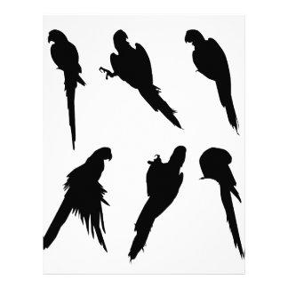 Macaw Silhouette Set Letterhead