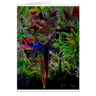 Macaws In Tropical Paradise At Night Card