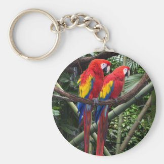 macaws keychain
