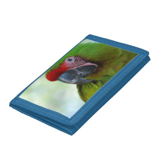 Macaws Trifold Wallet