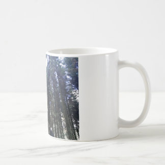 Macclesfield Forest Mug