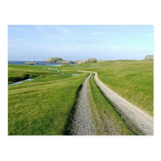 Machair, Isle of Iona Postcard