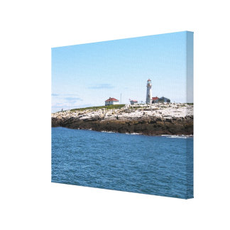 Machias Seal Island Lighthouse Canvas Print