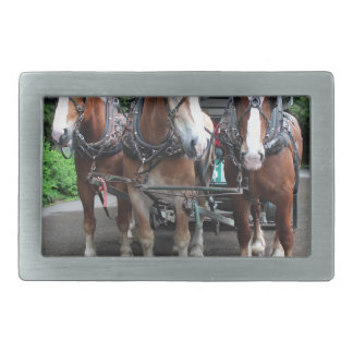 Mackinac Team I Rectangular Belt Buckles