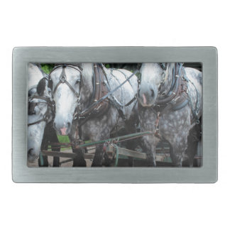 Mackinac Team II Rectangular Belt Buckles