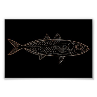 Macrel Fish Sea Ocean Black Rose Gold  Metallic Poster