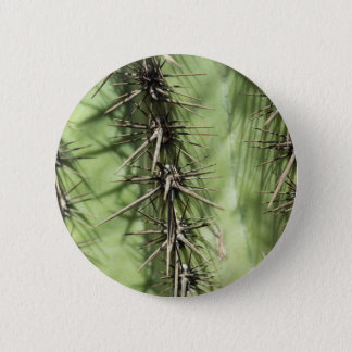 macro close up of cactus thorns 2 inch round button