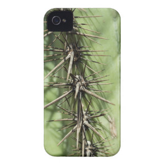 macro close up of cactus thorns Case-Mate iPhone 4 case