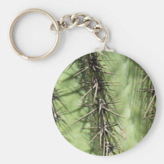 macro close up of cactus thorns keychain