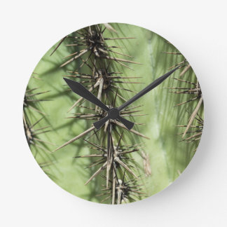 macro close up of cactus thorns round clock
