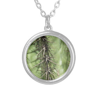 macro close up of cactus thorns silver plated necklace
