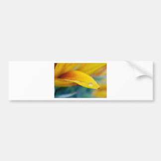 Macro drop on the sunflower petal bumper sticker