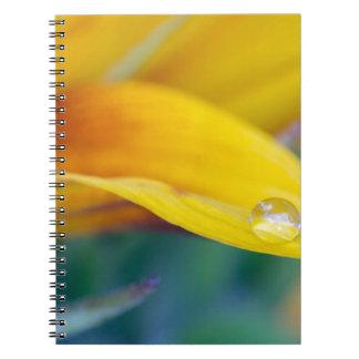 Macro drop on the sunflower petal notebook