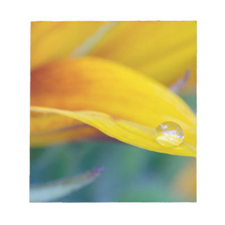 Macro drop on the sunflower petal notepad