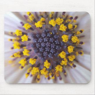 Macro Flower Pollen Mouse Pad