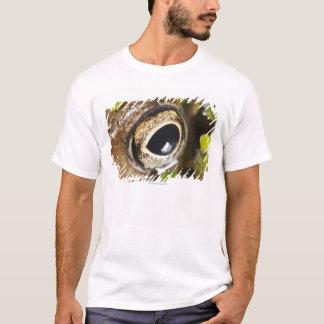 Macro; Horizontal; Colour; Color; Nobody T-Shirt