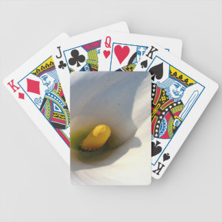 Macro of A Calla Lily With Shadows Bicycle Playing Cards