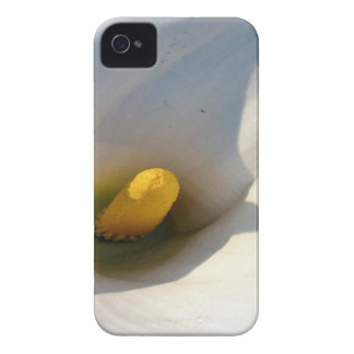 Macro of A Calla Lily With Shadows iPhone 4 Case