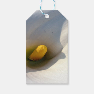 Macro of A Calla Lily With Shadows Pack Of Gift Tags