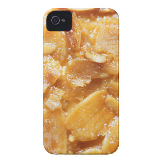 Macro of almond splitters on a cake iPhone 4 Case-Mate case