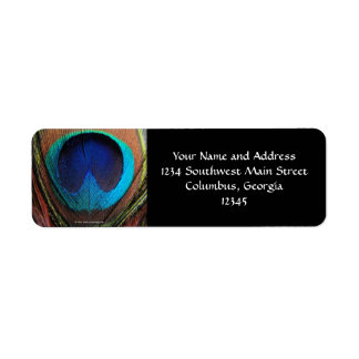 Macro Peacock Feather Rich Blues Photographic Return Address Label