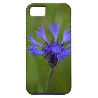 Macro photo of a cornflower (Centaurea cyanus) iPhone 5 Covers